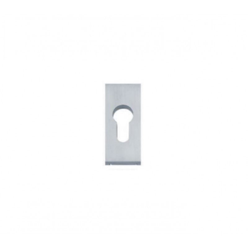 NT 1119PZ Escutcheon